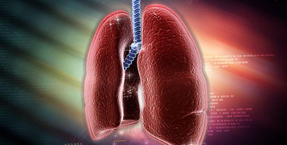 تصویر دیجیتال از ریه های انسان