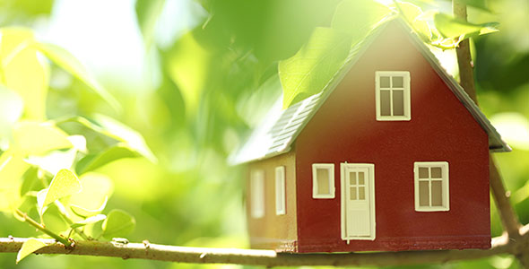 تصویر پس زمینه خانه و درختان سبز