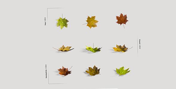 فایل لایه باز زوایای مختلف برگ پاییزی
