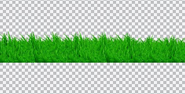 تصویر PNG چمن و سبزه