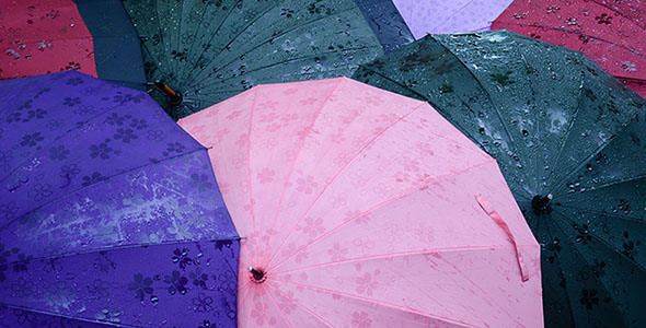 تصویر مجموعه چتر رنگی زیر بارش باران