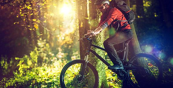 تصویر دوچرخه سواری در جنگل و طبیعت