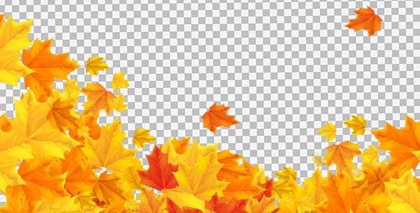 تصویر PNG پس زمینه فصل پاییز