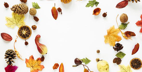 تصویر نمای بالا از عناصر پاییزی
