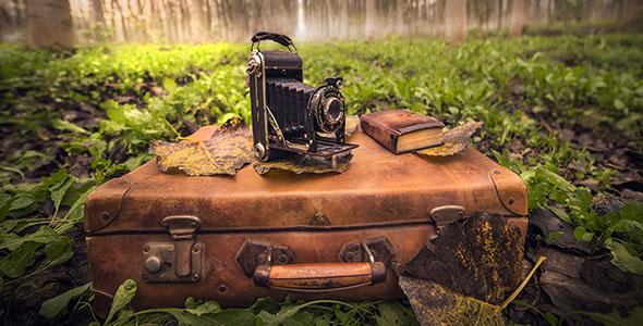 تصویر دوربین و چمدان قدیمی در جنگل