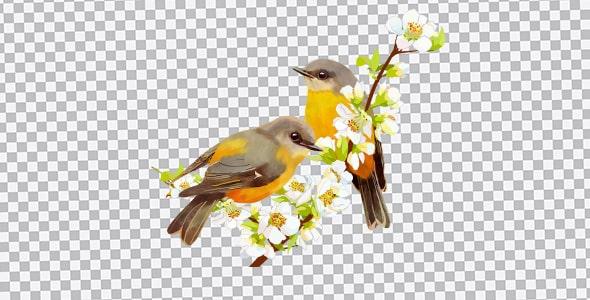 تصویر PNG پرنده کارتونی روی شاخه درخت