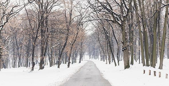 تصویر جاده خالی در منظره برفی