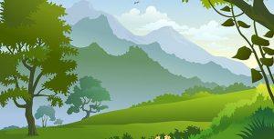 وکتور طبیعت و منظره جنگل سبز