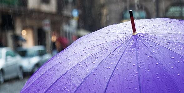 تصویر چتر بنفش زیر باران