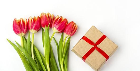 تصویر مجموعه لاله قرمز و جعبه کادو
