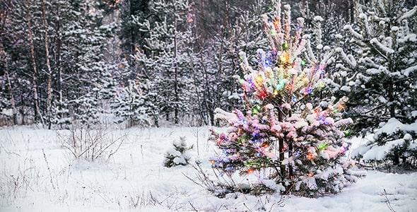 تصویر درخت کریسمس با لامپ در جنگل برفی