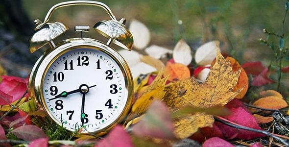 تصویر ساعت زنگ دار روی برگ های پاییزی