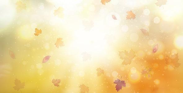 وکتور پس زمینه انتزاعی پاییز و برگ درخت