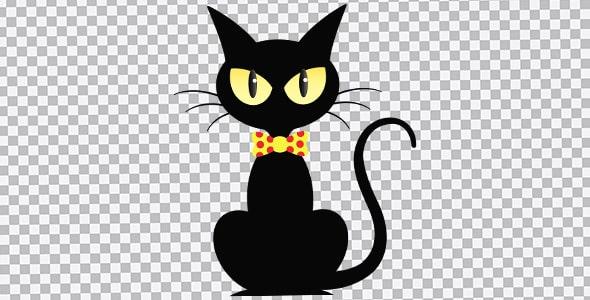تصویر PNG گربه سیاه با مفهوم هالووین
