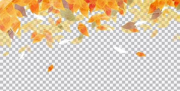 تصویر PNG برگ های پاییزی طرح آبرنگی