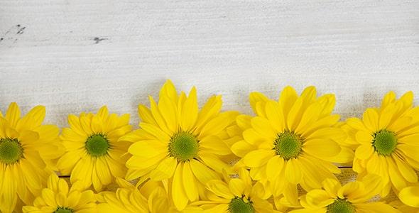 تصویر پس زمینه مجموعه گل زرد روی میز چوبی