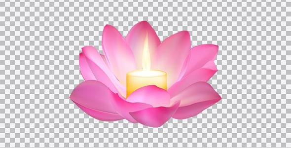 تصویر PNG گل لاله مردابی با شمع