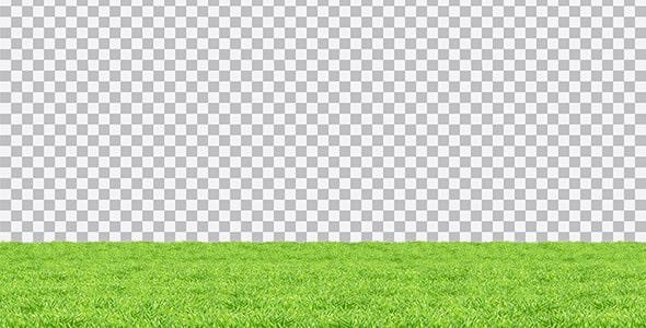 تصویر PNG چمن و سبزه مسطح
