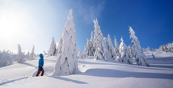 تصویر پس زمینه کوهپیمایی در فصل زمستان