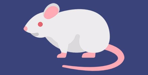 آیکون موش سفید