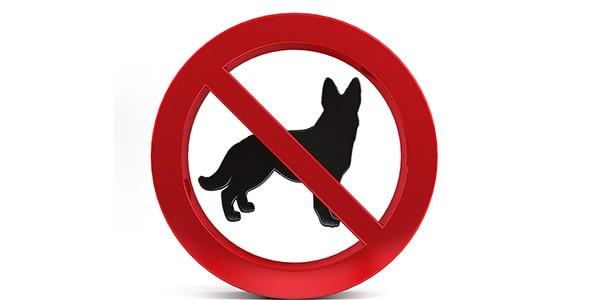 تصویر نماد ممنوعیت ورود سگ و حیوان