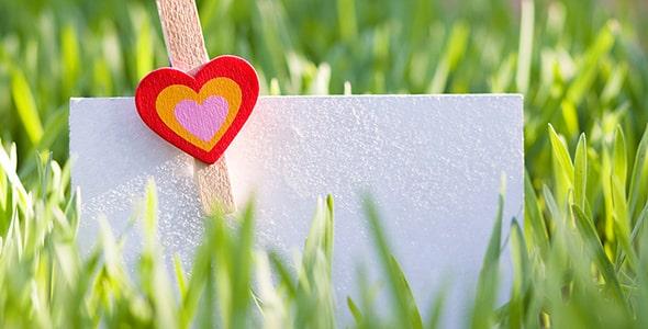 تصویر کارت تبریک خالی روی چمن در تابستان