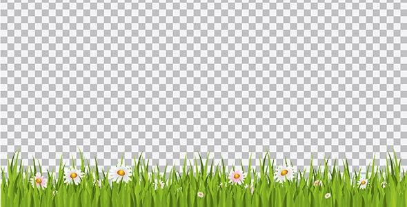 تصویر PNG چمن و سبزه با گل